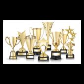 medalii si trofee